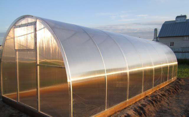 Особлива конструкція такої теплиці дозволяє забезпечити рослини максимальною кількістю світла і тепла