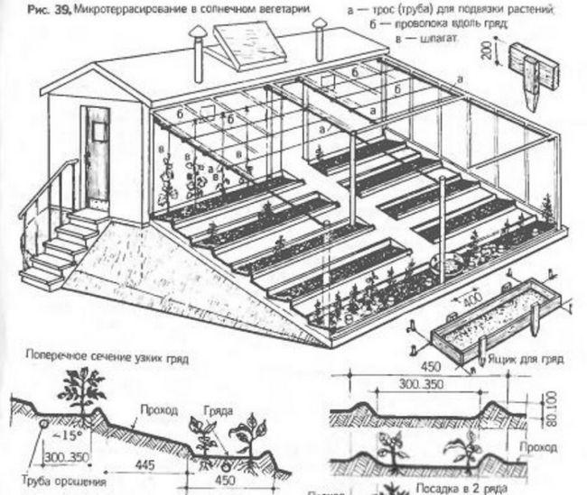 Всередині сонячного вегетарія, побудованого власними руками, зводяться тераси, де будуть розташовуватися грядки
