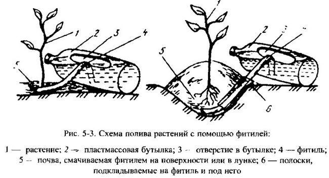 Практика індивідуального городництва і садівництва накопичила велику кількість самих різних і оригінальних способів