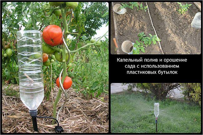 Для самих розпещених рослинних культур можна зробити крапельний варіант точно спрямованого поливу з використанням капілярного пристосування