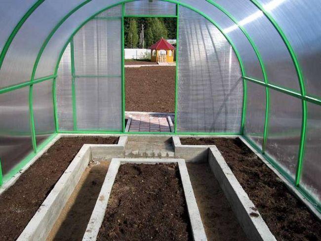 Обов`язково слід прибирати залишки рослин з теплиці на зиму, а не сподіватися, що їх можна буде легко видалити навесні