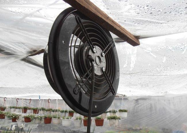 Роль примусової вентиляції для теплиць полягає в тому, щоб здійснювати переміщення і заміну повітряних мас, викликане штучно