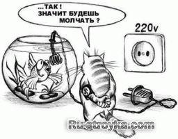 Заміна і монтаж електропроводки в квартирі